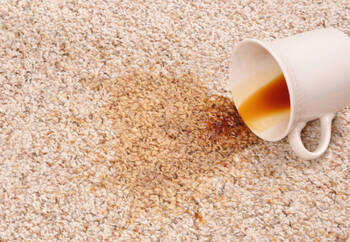 Carpet stain removal by QuickDri Carpet & Tile Cleaning