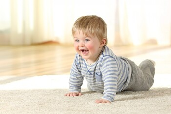 Waxahachie Area Carpet Cleaning